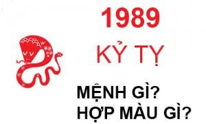 Sinh năm 1989 mệnh gì? hợp hướng nào? đeo đá màu gì?