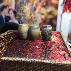 Lu thống đá gỗ hóa thạch